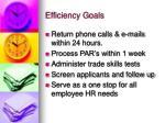 efficiency goals