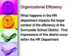 organizational efficiency10
