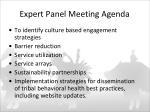 expert panel meeting agenda