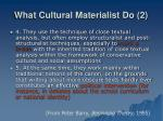 what cultural materialist do 2