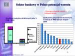 sektor bankowy w polsce potencja wzrostu