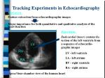tracking experiments in echocardiography