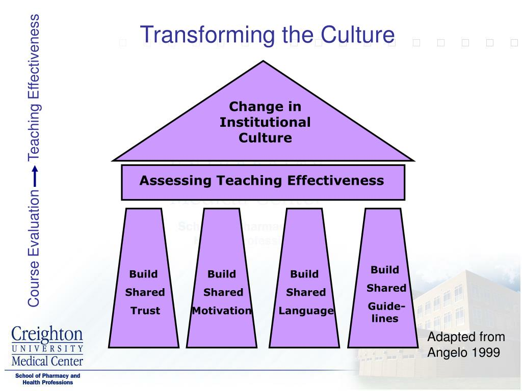 Transforming the Culture