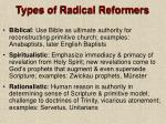 types of radical reformers
