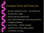common fears and concerns