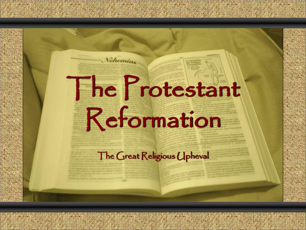 the protestant reformation l.