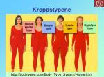 kroppstypene