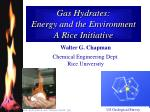 gas hydrates energy and the environment a rice initiative