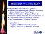 molecular to global scale