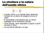 la struttura e la natura dell ossido nitrico