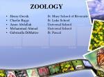 zoology75