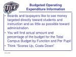 budgeted operating expenditure information49