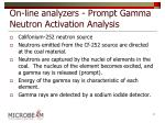 on line analyzers prompt gamma neutron activation analysis