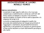 socializzazione al lavoro modelli teorici
