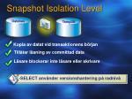 snapshot isolation level