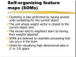 self organizing feature maps soms