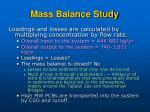 mass balance study29