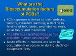 what are the bioaccumulation factors of pcbs13