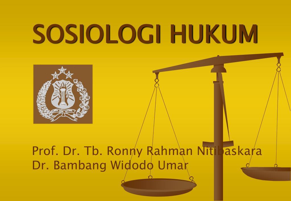 sosiologi hukum l.