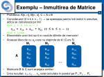 exemplu inmultirea de matrice