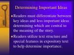 determining important ideas