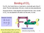 bonding of co 2