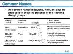 common names13