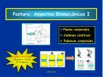 postura aspectos biomec nicos i