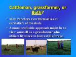 cattleman grassfarmer or both