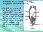 rivelatore a ionizzazione di fiamma fid flame ionization detector
