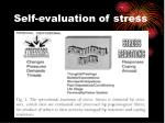 self evaluation of stress