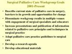 surgical palliative care workgroup goals 2001 present