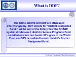 what is ddf