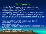 the puyuma
