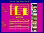 calving ease selection ce
