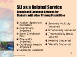 sli as a related service speech and language services for students with other primary disabilities