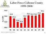 labor force calhoun county 1999 2008