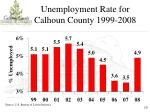 unemployment rate for calhoun county 1999 2008