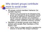 why deviant groups contribute more to social order