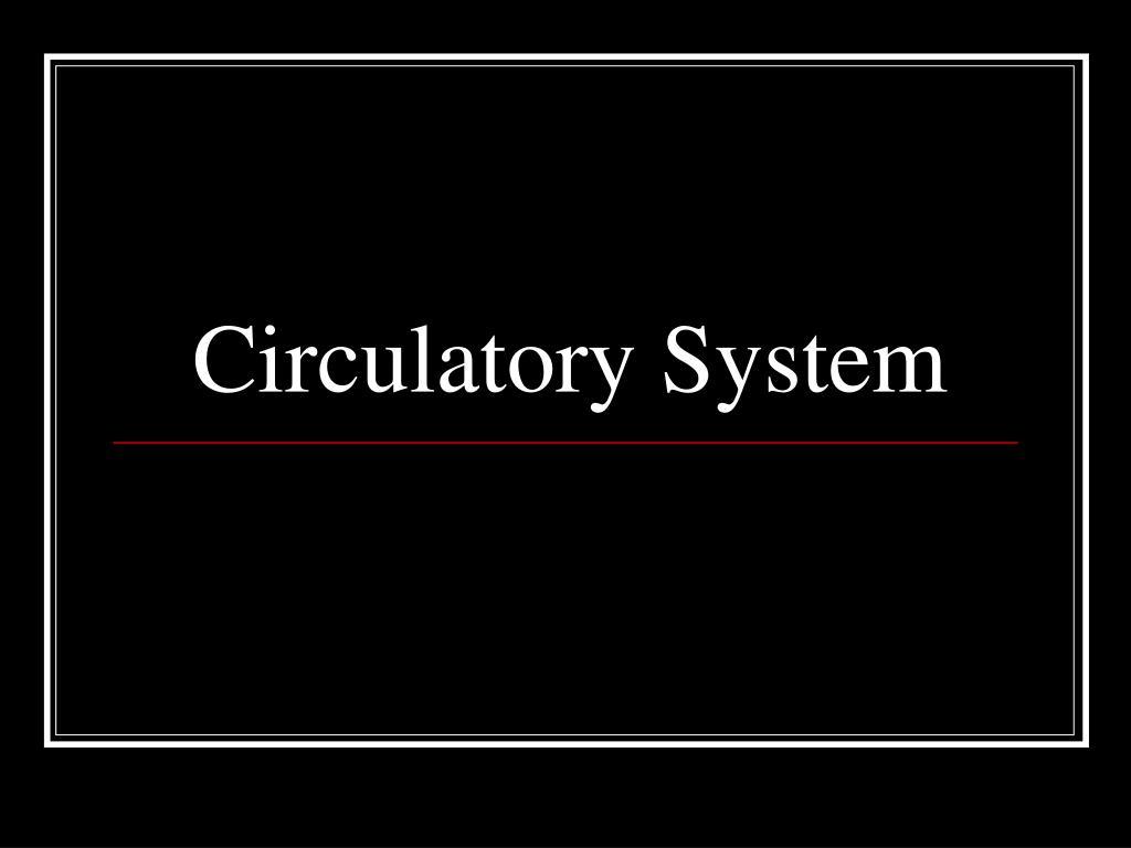 circulatory system l.