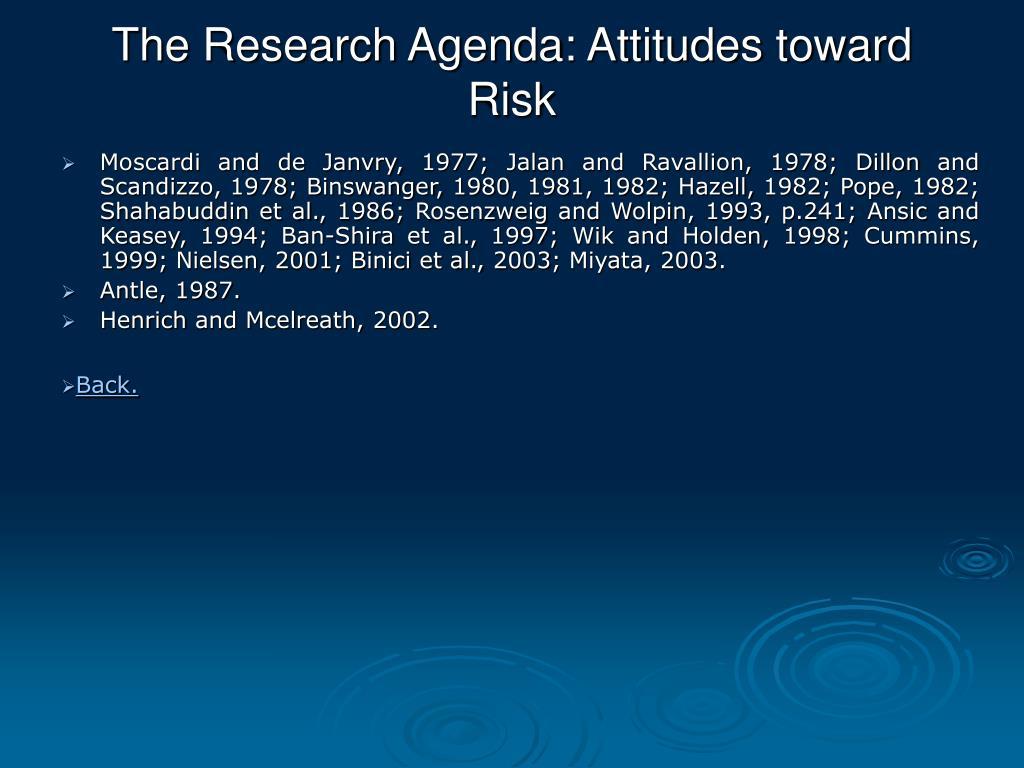 The Research Agenda: Attitudes toward Risk