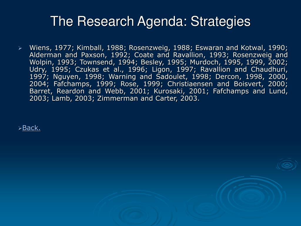 The Research Agenda: Strategies