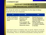 deposit insurance in the financial safety net