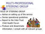 multi professional steering group