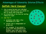 advantages of coloniality dilution effects