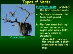 types of nests1