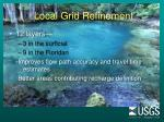 local grid refinement28
