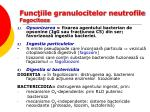 func iile granulocitelor neutrofile fagocitoza