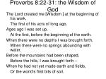 proverbs 8 22 31 the wisdom of god
