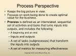 process perspective